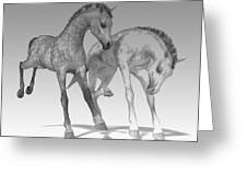 Foals Black And White Bleached Greeting Card