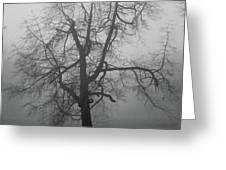 Foggy Tree In Black And White Greeting Card by William Selander