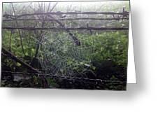 Foggy Web Greeting Card