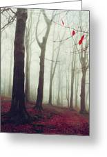 Forest In December Mist Greeting Card
