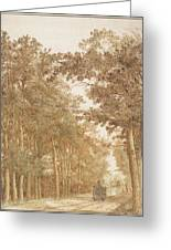 Forest Road Wi  Greeting Card
