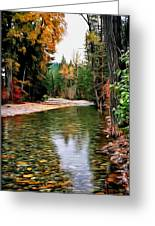Forest With River Greeting Card