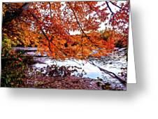 French Creek 15-107 Greeting Card