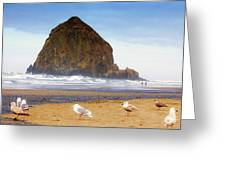 From A Gull's Perspective Haystack Rock Greeting Card