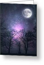 Full Moon Night Magic Greeting Card