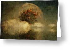 Full Moon Over Misty Water Greeting Card by Jan Keteleer