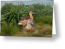Fulvous Whistling Ducks  Greeting Card