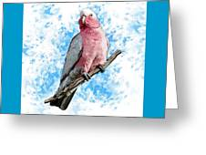 G Is For Galah Greeting Card