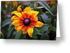Garden Gem Greeting Card
