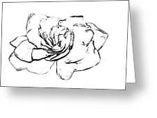 Gardenia Paint My Sketch Greeting Card