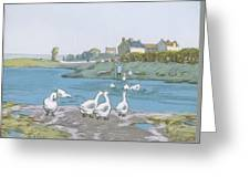 Geese By The River Loing 04 Greeting Card