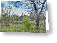 Ghost Town Kansas Greeting Card