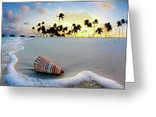 Gili Shell Greeting Card