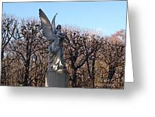 Girded By Trees, Light And An Angel Greeting Card
