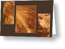 Wings Of Gold Brown Bckgrnd Greeting Card