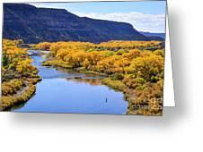 Golden Autumn Trees San Juan River Landscape Greeting Card