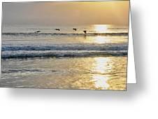 Golden Daybreak Greeting Card