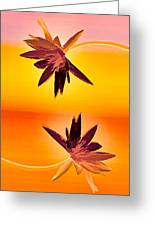 Golden Duo Water Lilies Greeting Card