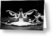 Gorgeous Ballerina Repeating Movements Greeting Card