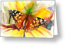 Gorgeous Painted Lady Butterfly Greeting Card by Don Northup
