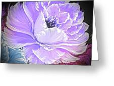 Gorgeous Rose In Purple  Greeting Card
