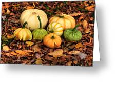 Gourds Grounded Greeting Card