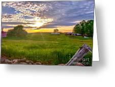 Gouveia Vineyard At Sunset  Greeting Card