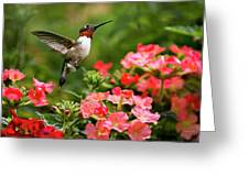 Graceful Garden Jewel Greeting Card