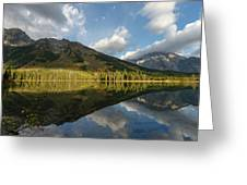 Grand Tetons And Fall Greeting Card by Ronnie and Frances Howard