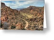 Grapevine Mountain Trail Greeting Card