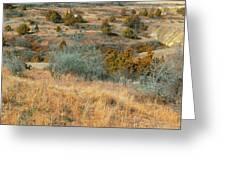 Grassy Ridge Reverie Greeting Card