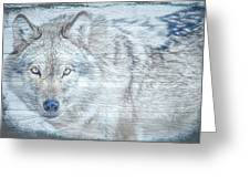 Gray Wolf Stare Greeting Card by Debra and Dave Vanderlaan