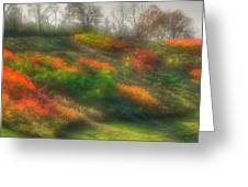 Ground Bouquet No. 3 - Somewhere In Greene County, Pennsylvania - Autumn Greeting Card