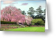 Weeping Cherry And Tulips Greeting Card