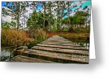 Halpatiokee Footbridge Greeting Card by Tom Claud