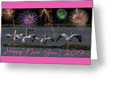 Happy New Year 2019 - Four Pelicans Greeting Card