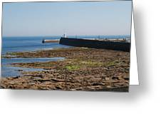 harbour at Seahouses on hazy summer day Greeting Card