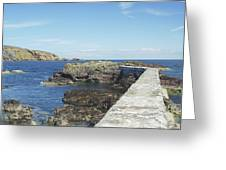 harbour wall and cliffs at St. Abbs, Berwickshire Greeting Card