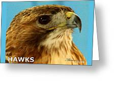 Hawks Mascot 3 Greeting Card