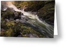 The Teifi At Henllan Falls Greeting Card by Elliott Coleman