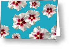 Hibiscus Flower Pattern Greeting Card