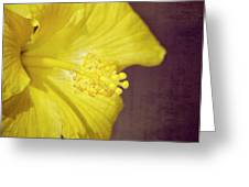 Hibiscus Yellow Greeting Card by Carolyn Marshall