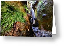 Hidden Falls Sombrio Beach 2 Greeting Card
