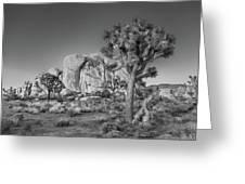 Hidden Valley Rock Greeting Card