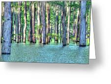 High Bayou Water Greeting Card