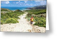 Hiking To Sandfly Bay New Zealand Greeting Card