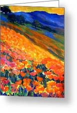 Hillside Poppy Burst Greeting Card