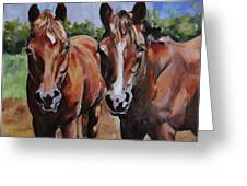 Horse Art  Greeting Card
