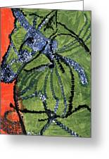 Horse On Orange And Green Greeting Card