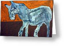 Horse On Orange Greeting Card